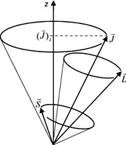 Stored and cooled ions division the g factor of highly charged ions coupling of the vectors of spin s and orbital angular momentum l to the total angular ccuart Images